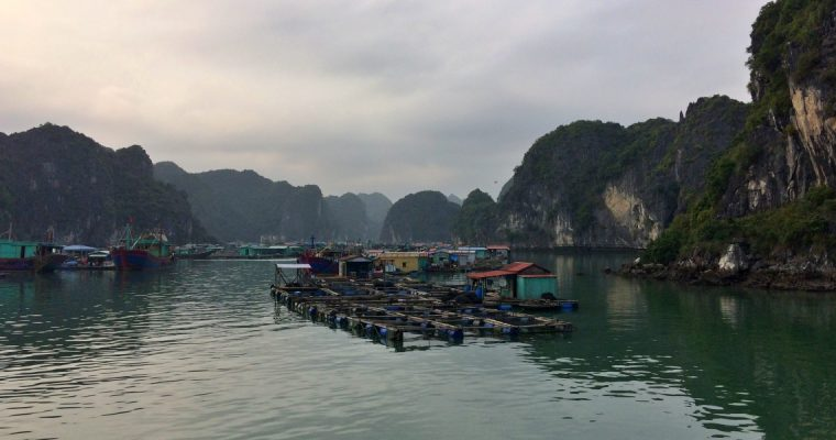 Cat Ba, the alternative to Ha Long Bay