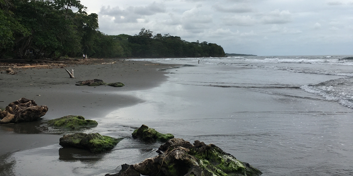 Playa negra - pinterjuco.hu