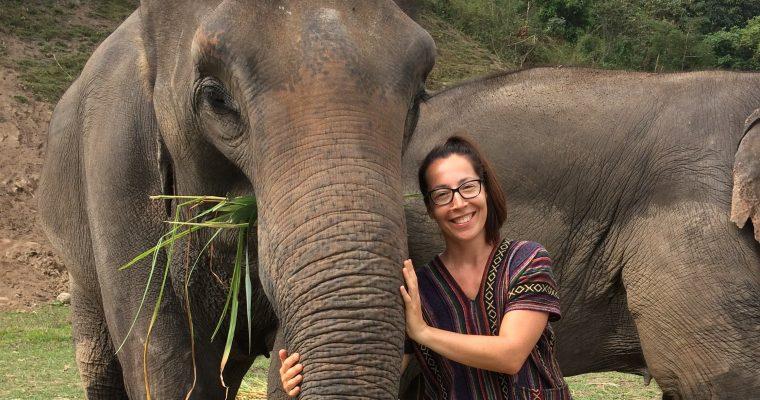 Elefántok földjén