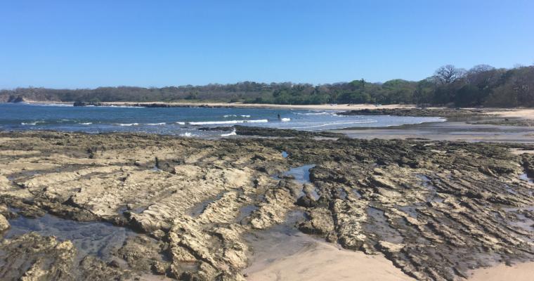 Nosara – Playa Guiones